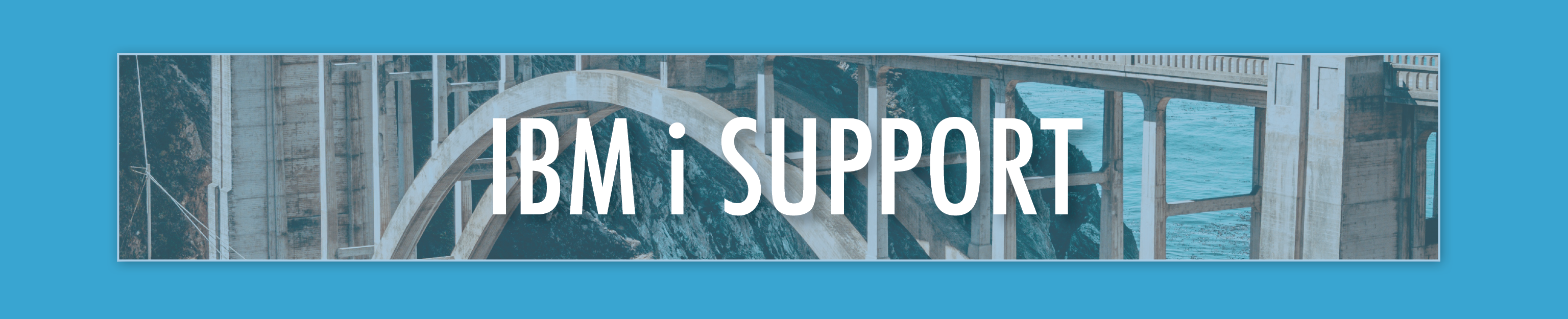 Newsletter_banner_support.png